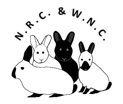 De Nederlandse Russen, Californian & Witte Nieuw Zeelanderclub.